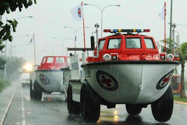 red cross amphibian